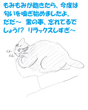 2013082205.png