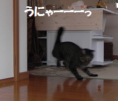 2013102908.png