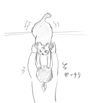 2013110305.png