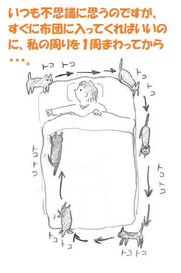 2013111502.png