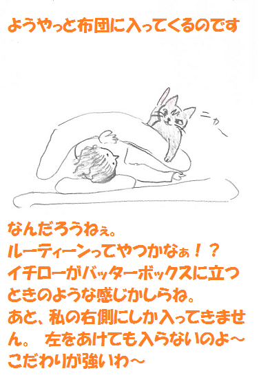 2013111503.png