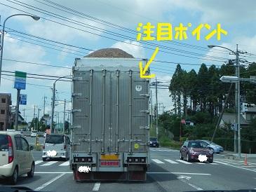DSCN00144.jpg