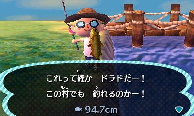 レア 魚 森 どうぶつ の とびだせ