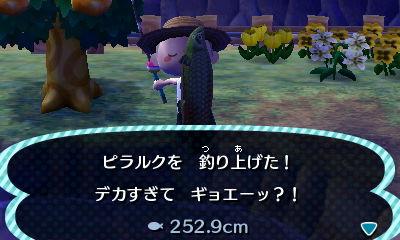 とび森 7月 虫 魚