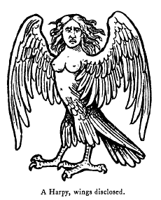 Harpy.png