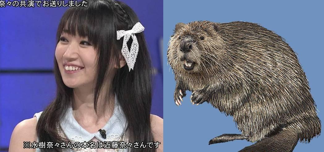 bmizuki.jpg