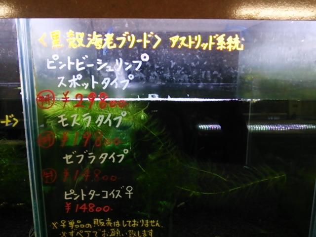 20131020221753c0f.jpg