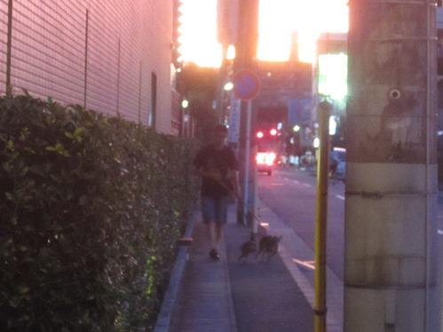 0916散歩_01