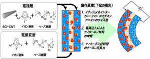 図1 ナノカーボン高分子アクチュエーターの構成とその駆動原理