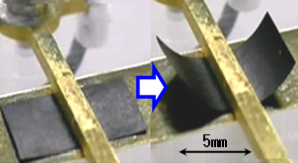 2p5 Vの電圧で駆動中の今回開発したナノカーボン高分子アクチュエーター