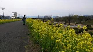 camera81.jpg