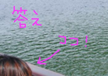 瀬田唐橋3★ドキドキサンクス