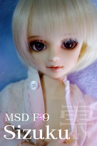 MSDF-9:雫201304