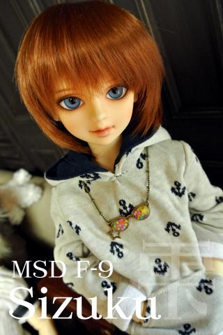 MSDF-9:雫201306