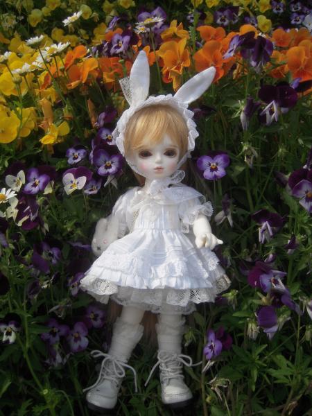 春紫苑ちゃん 1