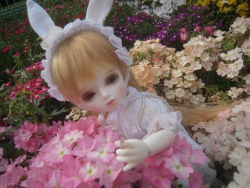春紫苑ちゃん 2
