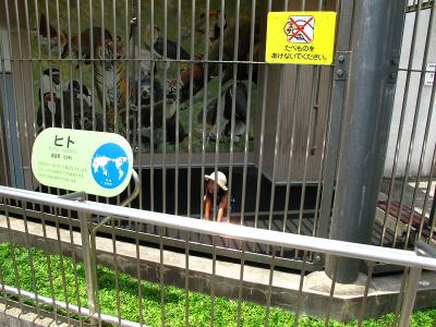 2013/7/18日本平動物園:ヒトw