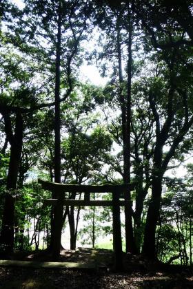 2013/08/18藁科川ポタリング_木枯の森の境内から見下ろす
