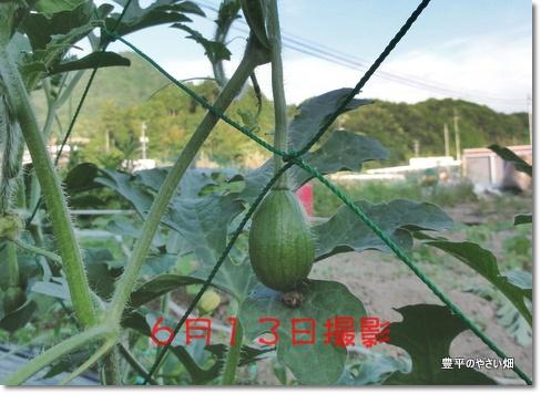 001_20130711210834.jpg