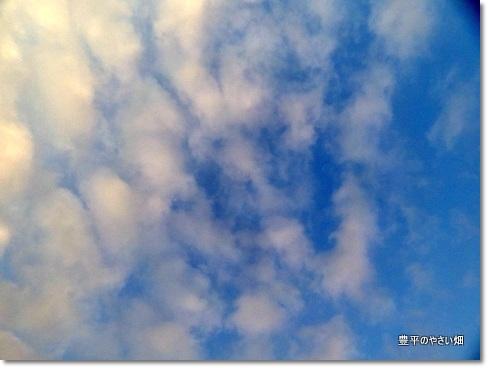 1-DSC00050_20130829173720c65.jpg