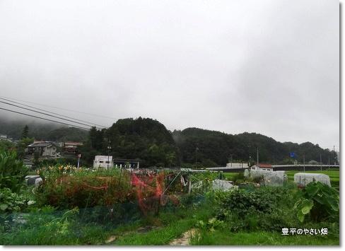 1-DSC00317.jpg