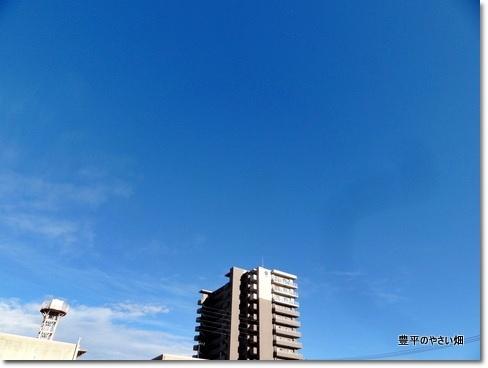 1-DSC00460.jpg