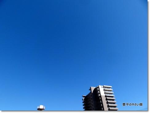 1-DSC01303.jpg