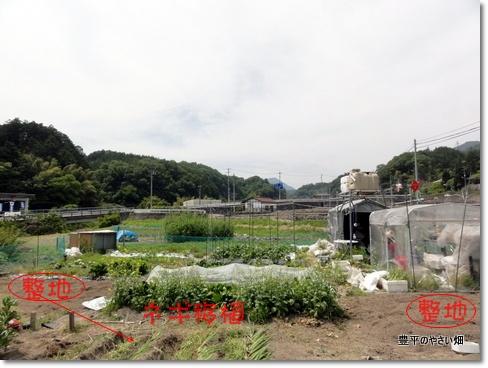 1-DSC01432.jpg
