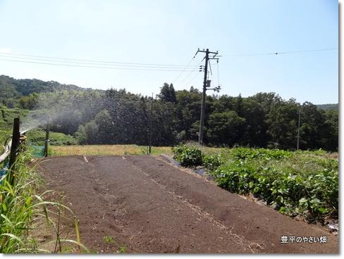 1-DSC01613.jpg