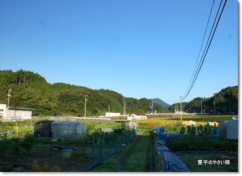 1-DSC07586-001.jpg