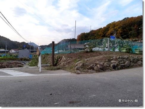 2013-11-41-DSC063731.jpg