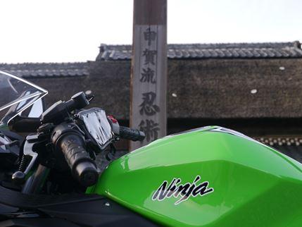 P1030358_R.jpg