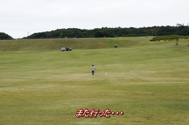 DSC02315.jpg