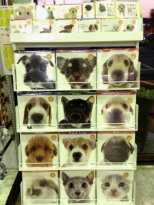 カレンダー 犬