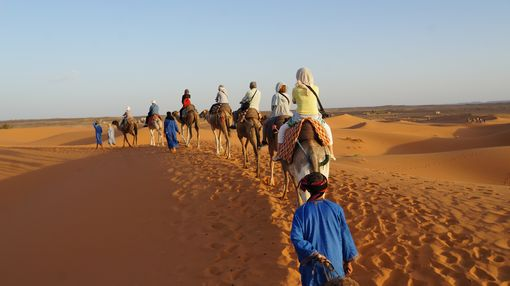 Sahara 18cmDSC03184