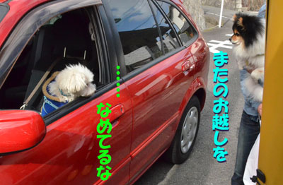 DSC_5709_20130421210039.jpg