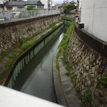 細井川8:00
