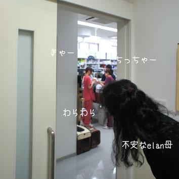 DSC00523_46578.jpg