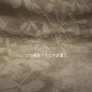 DSC00925_46981.jpg
