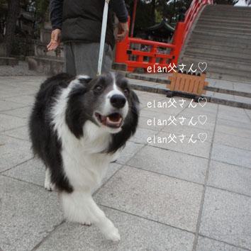 DSC05408_41305.jpg