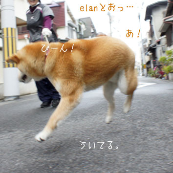 DSC05498_41400.jpg