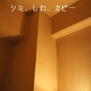 DSC06532_42435.jpg