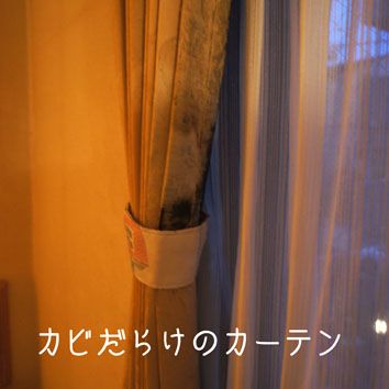 DSC06533_42436.jpg