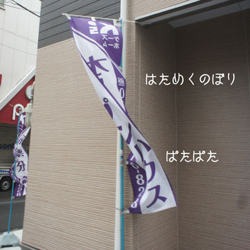 DSC06777_53000.jpg