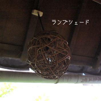 DSC07196_43098.jpg