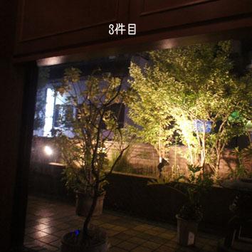 DSC09154_45201.jpg