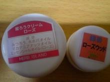 輝く!男塾・女塾-100523_173514_ed.jpg
