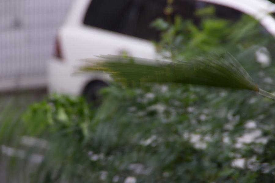 20141013-1_市内全域に避難準備情報_1