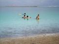 死海で浮遊体験/エンボケック