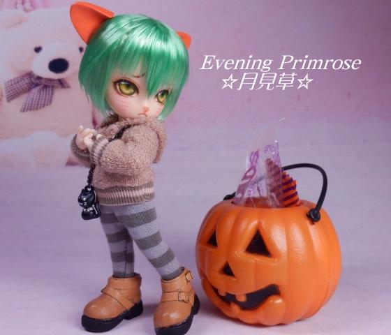かぼちゃ01